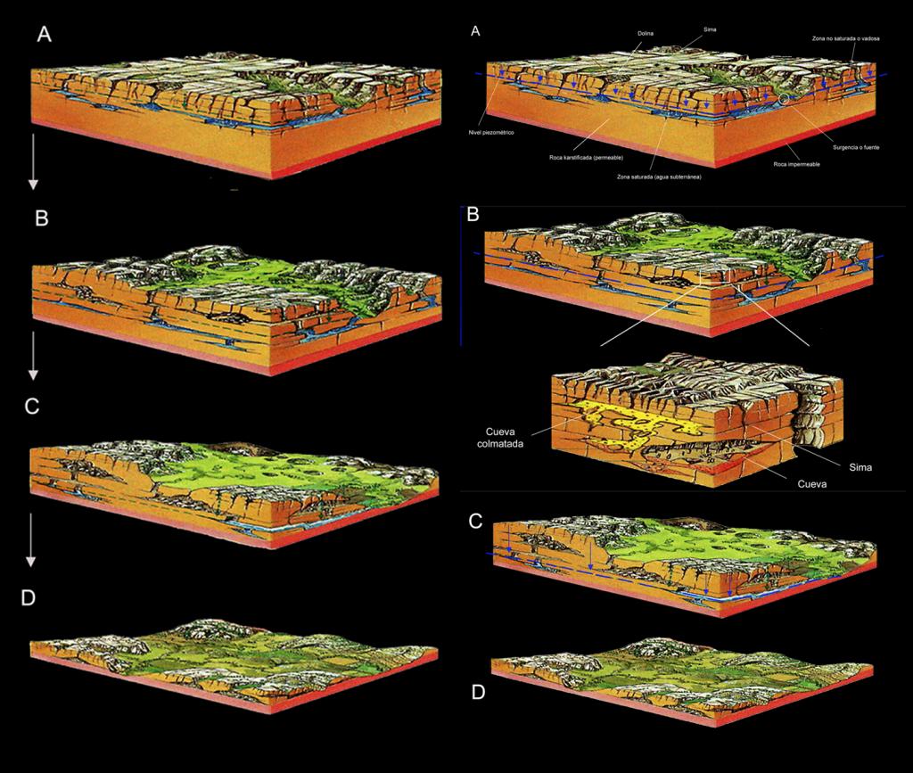 FIG. 1 y 2: Model d'evolució càrstica segons J. Guimerá, modificat. FIG. 3 y 4: Diferents fases evolutives del carst de la Cova del Bolomor des del seu origen fins la seua desaparició.