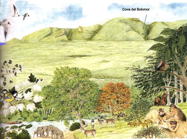 Reconstrucción paleoambiental de La Valldigna al inicio del Pleistoceno superior hace 120.000 años. Dibujo C. Puche