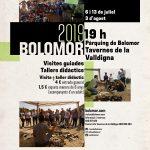 cartell-bolomor-2019-val3tbaja